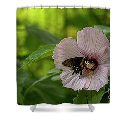 Rose Mallow Shower Curtain