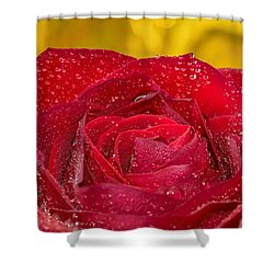 Rose N Gold Shower Curtain
