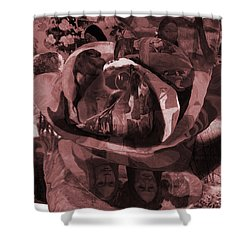 Rose No 2 Shower Curtain