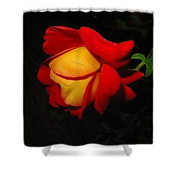 Shower Curtain featuring the photograph Rose Of Fire by Joyce Dickens