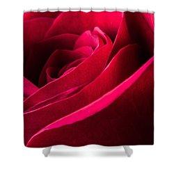 Rose Of Velvet Shower Curtain