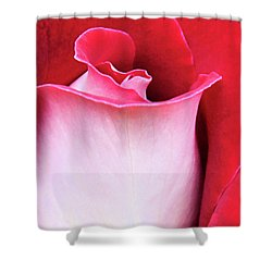 Shower Curtain featuring the photograph Rose Petals by Kristin Elmquist