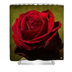 Shower Curtain featuring the photograph Rose Tapestry by Blair Wainman