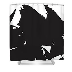 Rose Transformed Shower Curtain
