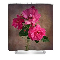 Rose Trio Still Life Shower Curtain by Louise Kumpf