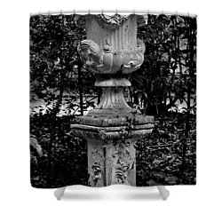 Rose Urn Shower Curtain by DigiArt Diaries by Vicky B Fuller
