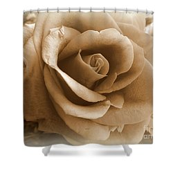 Rose Vignette Shower Curtain