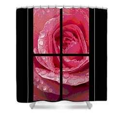 Rose Window Shower Curtain by Hazy Apple