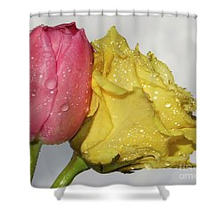 Shower Curtain featuring the photograph Rose With Tulip by Elvira Ladocki