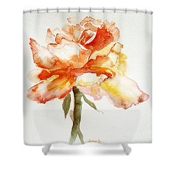 Rose Yellow Shower Curtain by Jasna Dragun