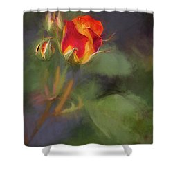 Rosebuds Shower Curtain by Billie-Jo Miller