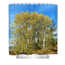 Rosehips And Cottonwoods Shower Curtain by Will Borden