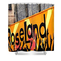 Roseland Ballroom In Nyc Shower Curtain