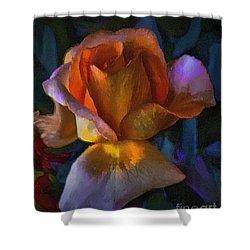 Shower Curtain featuring the photograph Roselight by John  Kolenberg
