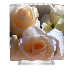 Roses #11 Shower Curtain