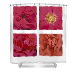 Roses Are Red .... Shower Curtain by Hazy Apple
