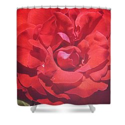 Shower Curtain featuring the photograph Roses Are Red by Cassandra Buckley