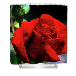 Roses Are Red My Love Shower Curtain by Susanne Van Hulst