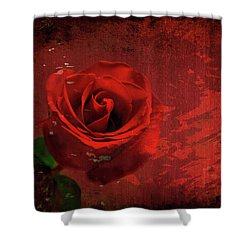 Shower Curtain featuring the photograph Roses Are Still Red by Bonnie Willis