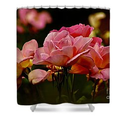 Roses By The Bunch Shower Curtain