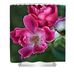 Roses For You Shower Curtain