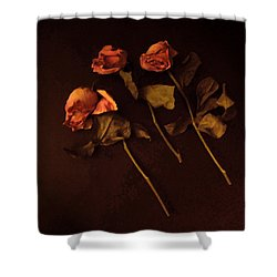 Roses In Amber Light Shower Curtain by Cedric Hampton