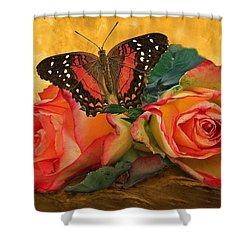 Roses In Golden Light 2 Shower Curtain