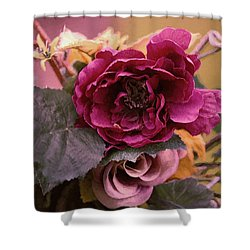 Roses In Oils Shower Curtain