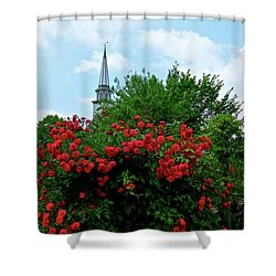Roses On The Fence In Mauricetown Shower Curtain