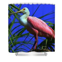 Shower Curtain featuring the painting Rosetta Spoonbill Alligator Farm by Deborah Benoit