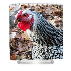 Rosie The Chicken Shower Curtain