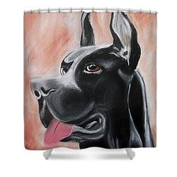 Rosie The Great Dane Shower Curtain by Arlene  Wright-Correll