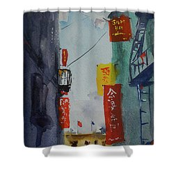 Ross Alley6 Shower Curtain