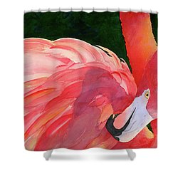 Rosy Outlook Shower Curtain