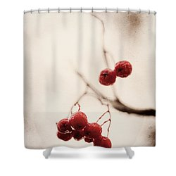 Rote Beeren - Red Berries Shower Curtain