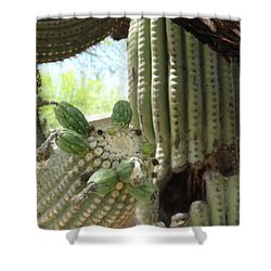 This Cactus Is Rotten To The Core Shower Curtain