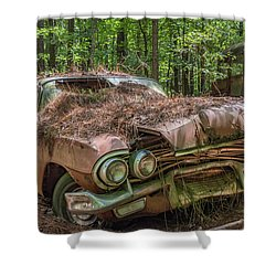 Rotting Classic In Color Shower Curtain