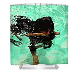 Rottweiler Dog Swimming Shower Curtain by Sally Weigand