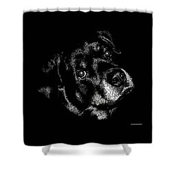 Rottweiler Mozart Portrait Shower Curtain