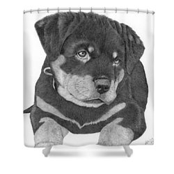 Rottweiler Puppy Shower Curtain by Patricia Hiltz