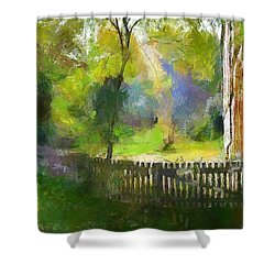 Shower Curtain featuring the painting Around The Cathedral by Wayne Pascall