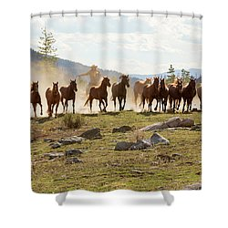 Shower Curtain featuring the photograph Round Up by Sharon Jones