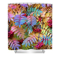 Rowan Shower Curtain by Michele Penner