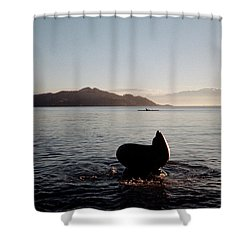 Rowing Off Sausalito, Ca Shower Curtain