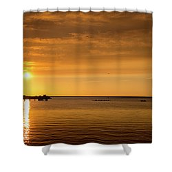 Shower Curtain featuring the photograph Rowingteam by Onyonet  Photo Studios