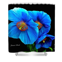 Royal Blue Poppies Shower Curtain