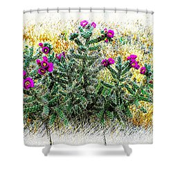 Royal Gorge Cactus With Flowers Shower Curtain