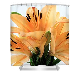 Shower Curtain featuring the photograph Royal Lilies Full Open - Close-up by Ray Shrewsberry