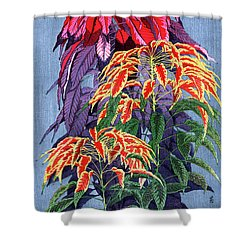 Roys Collection 6 Shower Curtain