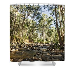 Shower Curtain featuring the photograph Rubicon River by Linda Lees